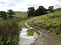 The road to England - geograph.org.uk - 539041.jpg