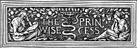 The Wise Princess cover