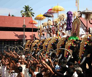 Pooram - Caparisoned elephants and Panchavadyam performance during Sree Poornathrayesa temple festival, Thrippunithura.