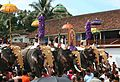 Thrippunithura-Elephants10 crop.jpg