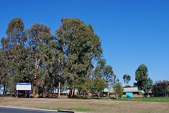 Thurgoona, New South Wales - Thurgoona Public School