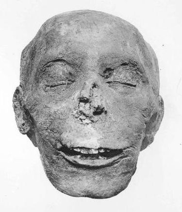 Mummified head of Thutmose III. Thutmose III Head.jpg