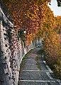 Tiber embankment (25821123538).jpg
