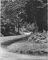 To Brockton Point, Stanley Park, Vancouver, B.C. (14178619065).jpg