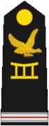Togo-Air Force-OR-8.png