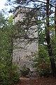 Tour de Samois cachée (2).jpg