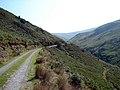 Track in Nant Dol-goch - geograph.org.uk - 239879.jpg