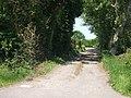 Track to Fenwick Grange - geograph.org.uk - 1336470.jpg