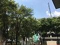 Trees at Tecnológico de Monterrey.jpg