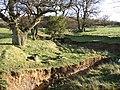 Tributary of Healeycote Burn - geograph.org.uk - 306256.jpg