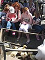 Tring Spring Fayre in Church Square 2009, Children with baby animals - geograph.org.uk - 1283262.jpg
