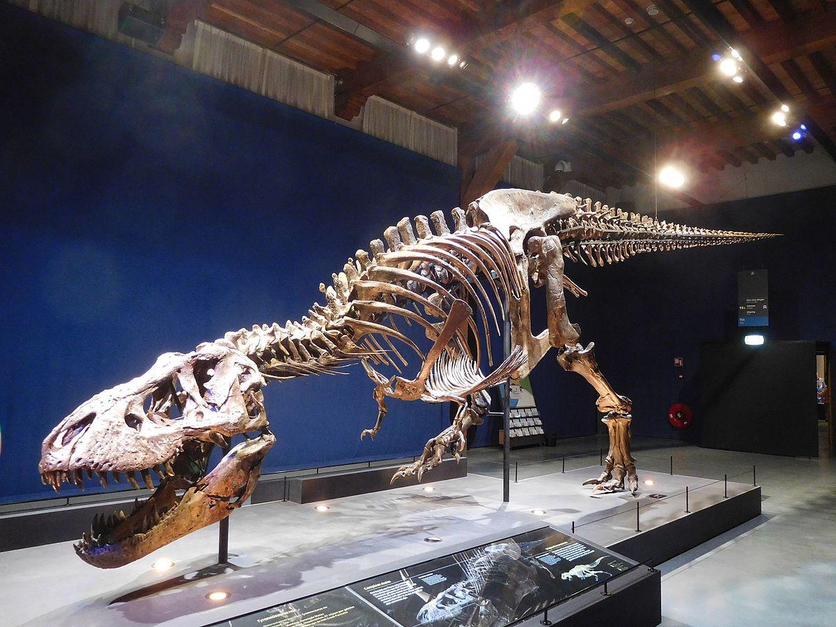 Image result for t rex trix