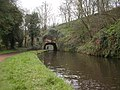 Tunnel on the Staffs - Worcester Canal - geograph.org.uk - 700054.jpg