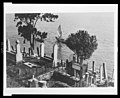 Turks have great respect for the dead and for this reason their cemeteries are placed in the most beautiful spot to be found Although crowded and irregular the great number of trees and LCCN2010650589.jpg