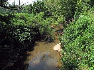 Tygart Creek - Tygart Creek near Mineral Wells in 2010
