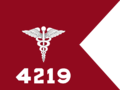 USA - Guidon - Medical.png