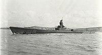 USS Spadefish;0841102.jpg