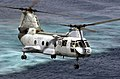 """US Navy 030415-N-2385R-003 A CH-46 Sea Knight assigned to the """"Gunbearers"""" of Helicopter Combat Support Squadron Eleven (HC-11).jpg"""