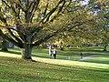 Universitetsparken (oktober).jpg
