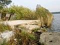 Upes krasts - panoramio (1).jpg