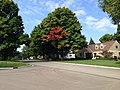 Upper Arlington, Ohio (30155139225).jpg