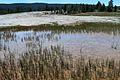 Upper Geyser Basin Yellowstone 12.JPG