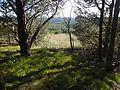 Upper Pilot Knob Campsite - panoramio.jpg