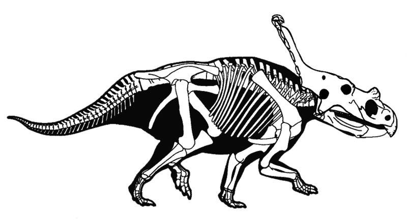 Fossils vs. Andrew Coltrane* A.C. - Fossils Vs. A.C.