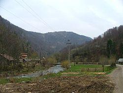 Valea Ierii02.jpg