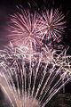 Valentines Day Fireworks 2011 (5444819457).jpg