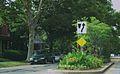 Victorian Village floral median.jpg