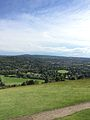 View from Box Hill.jpg