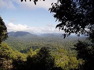 View from Bukit Terisek.jpg