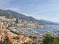Views of Monaco.jpg