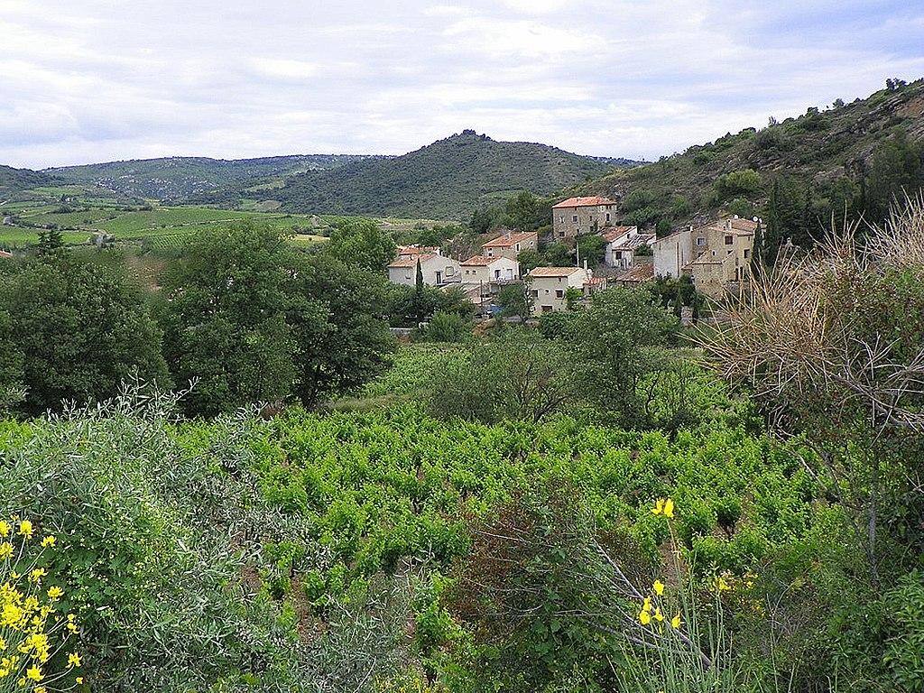 Villeneuve-les-Corbières au milieu de son vignoble