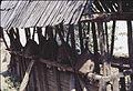 Volche vo 1978 godina 2.jpg