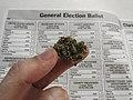 Vote for Weed (44786315975).jpg