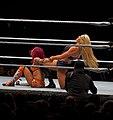 WWE Live 2016-09-07 21-21-28 ILCE-6300 1649 DxO (30975108021).jpg