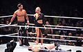 WWE Smackdown Wrestlemania Revenge (8662058696).jpg