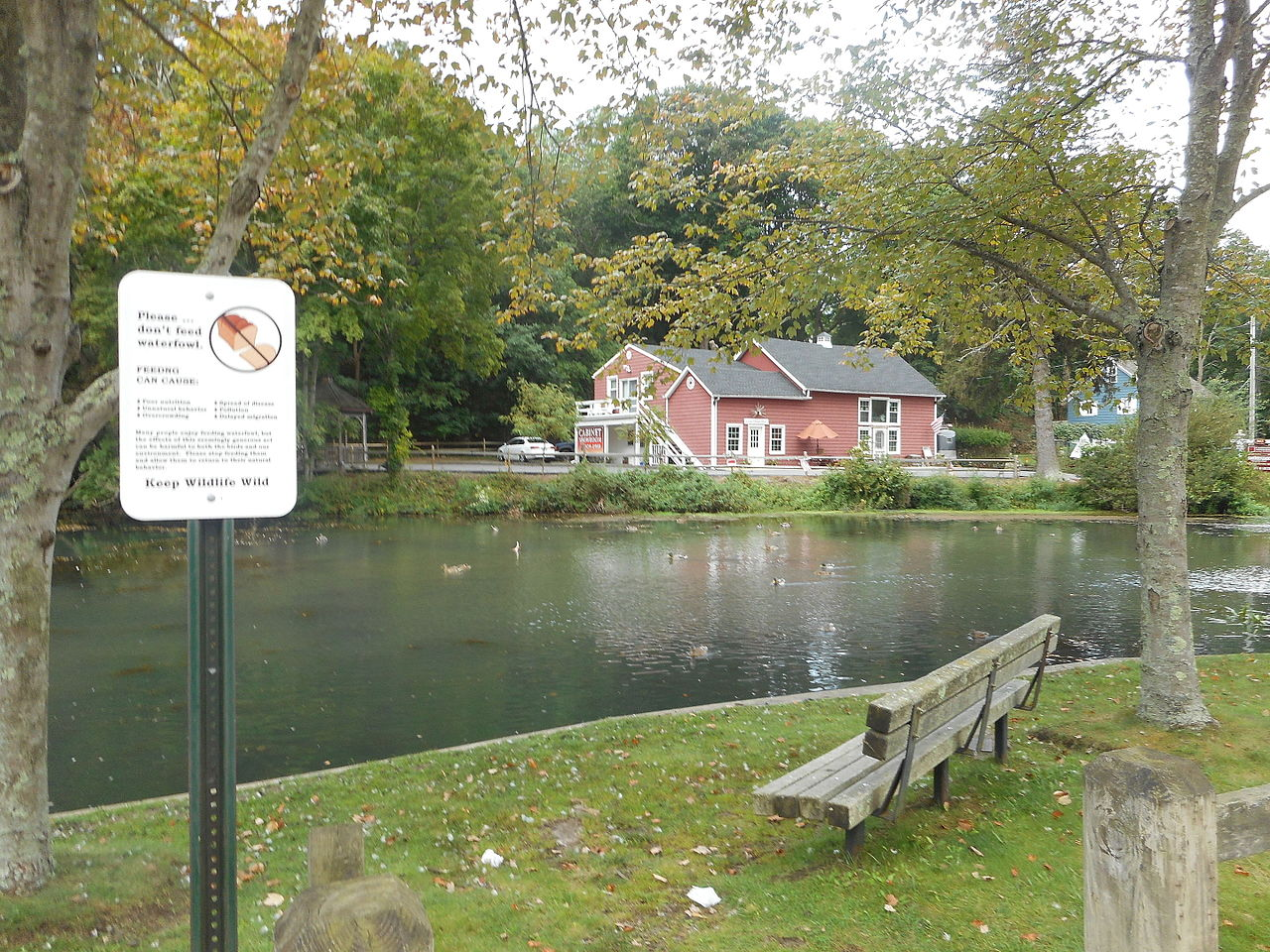 wading river dating See the 7 most recommended doctors in wading river, ny honest opinions shared by friends and neighbors want to find out who they refer.