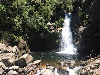 Wainui Falls - Wainui Falls in December 2017.