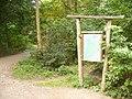 Waldwegkreuzung im Grunewald - geo.hlipp.de - 28464.jpg