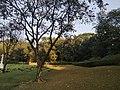 War cemetery Chittagong 2020 6.jpg