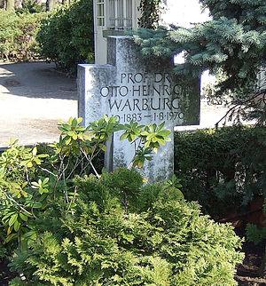 Otto Heinrich Warburg - Warburg's grave in Berlin, Cemetery Dahlem