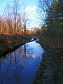 Waterlogged Lane, Limekiln Forest - geograph.org.uk - 316715.jpg