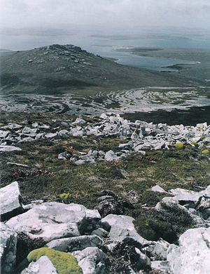 Geography of the Falkland Islands - Stone runs on Weddell Island