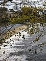 Weir on the Wharfe - geograph.org.uk - 617980.jpg