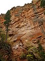 West Fork of Oak Creek Canyon (5178453597).jpg