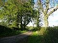 West Staffordshire Lane - geograph.org.uk - 1024464.jpg