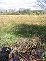 Wetland near Dalbeattie. - geograph.org.uk - 134600.jpg